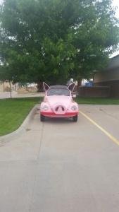 pig car